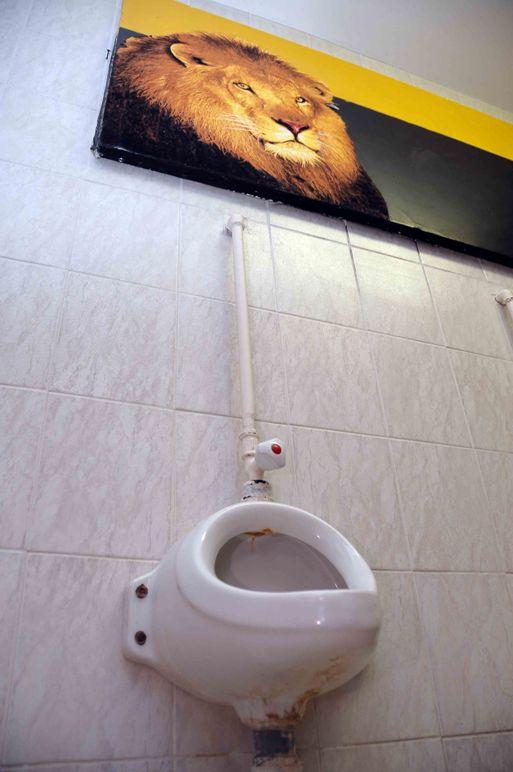 Туалет-музей в Ижевске сменил экспозицию на «Рукотворное»